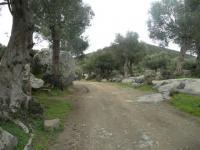 Μαρώνεια Δρόμος στον Ίσμαρο